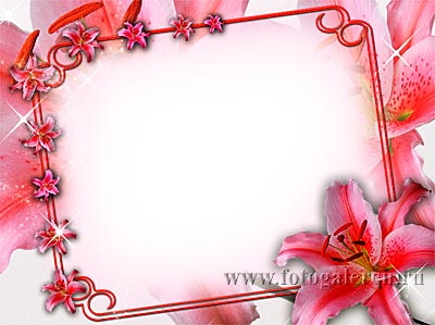 Нежное цветочное обрамление из лилий для вставки фотографии к любому празднику или цифровой фотошаблон